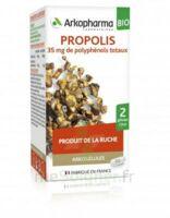 Arkogélules Propolis Bio Gélules Fl/45 à CLERMONT-FERRAND