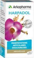ARKOGELULES HARPAGOPHYTON Gélules Fl/150 à CLERMONT-FERRAND