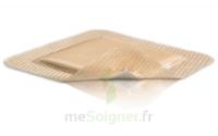 Mepilex Border Pansement hydrocellulaire stérile 10x30cm B/10 à CLERMONT-FERRAND