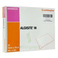 ALGISITE M, 10 cm x 10 cm, bt 10 à CLERMONT-FERRAND